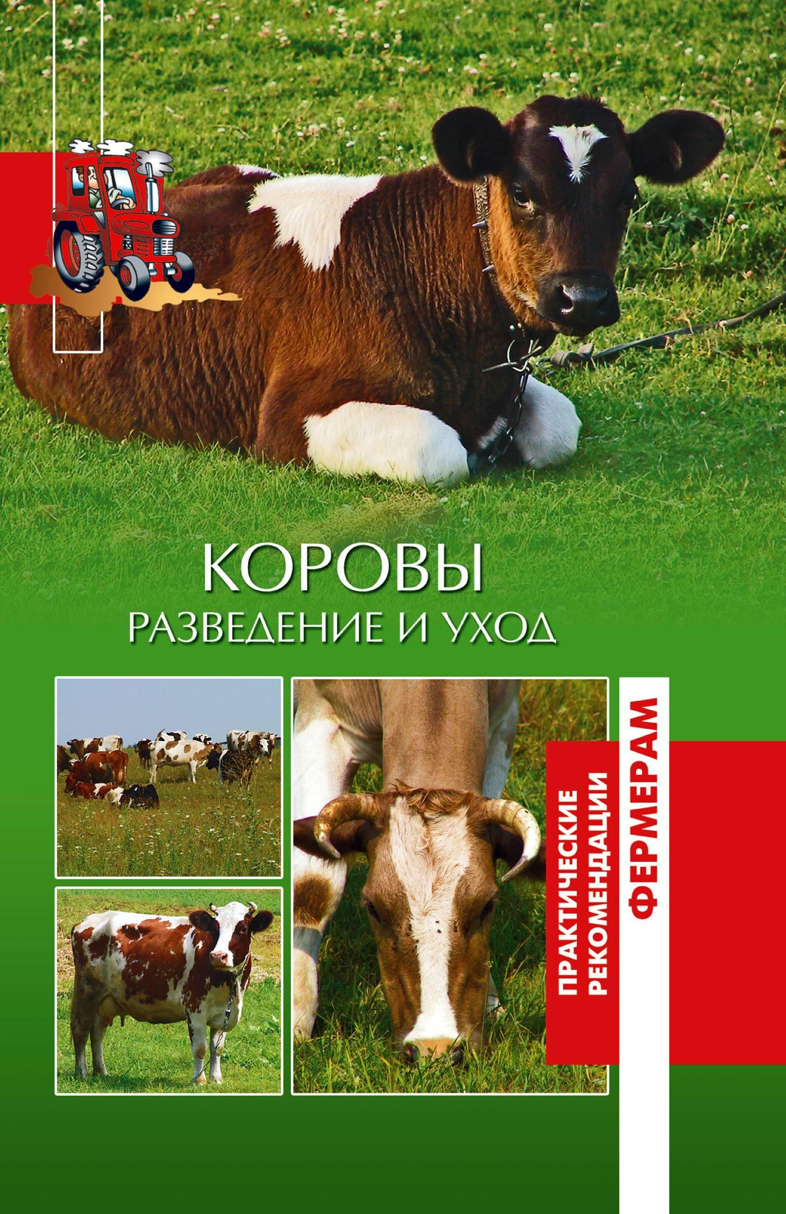 Красно-пестрая порода коров