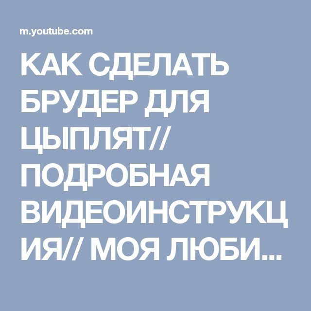 Брудер для цыплят - 7ogorod.ru