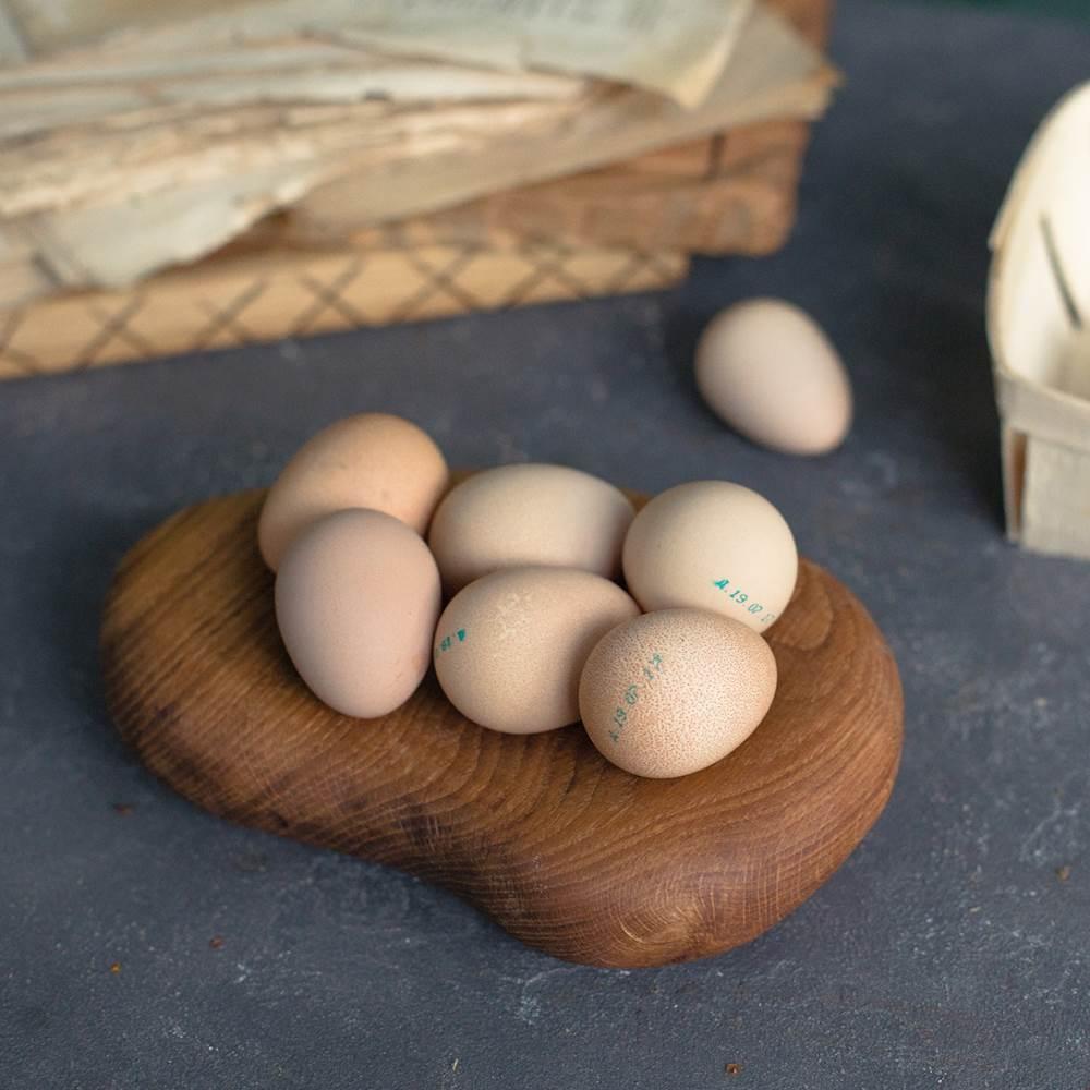 Яйца цесарок: влияние на человека, отличие от куриных | наши птички