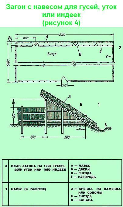 Как построить гусятник или птичник своими руками?