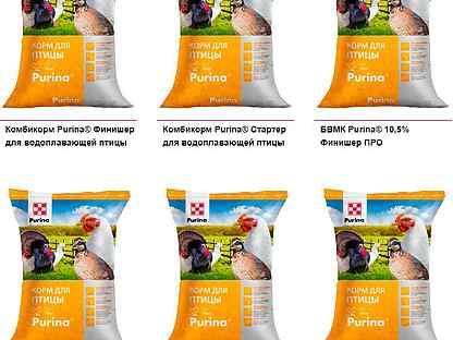 О пробиотиках для бройлеров рост, бест, богданович, старт, пурина стартер