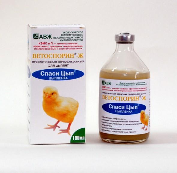 Характерные заболевания гусей, их симптомы и лечение