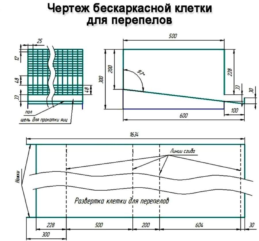 Как сделать клетку для бройлеров своими руками? чертежи, фото и описание этапов работы