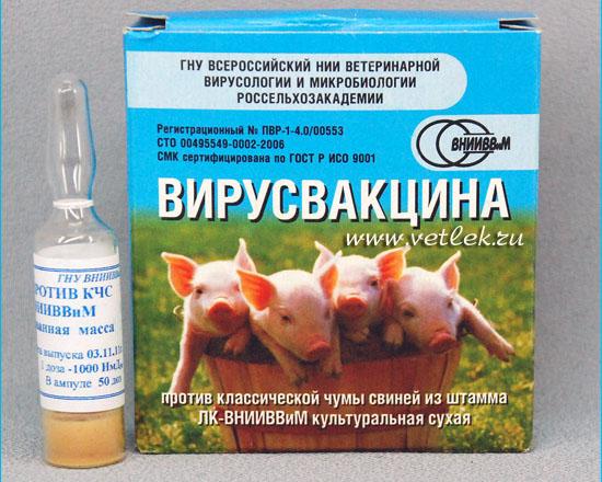 О прививках поросятам: вакцина ппд для свиней, инструкция, какие уколы ставят