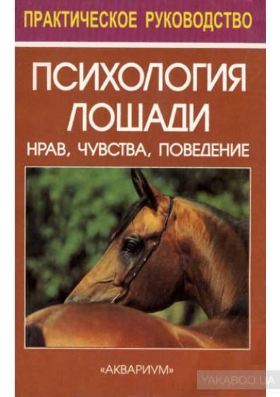 ✅ о психологии лошадей: как научить коня доверию и приучить к дресировке - tehnomir32.ru