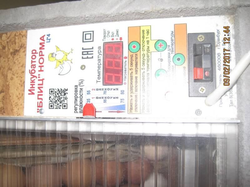 Инкубатор «блиц-48» цифровой: обзор, описание характеристик и инструкция по применению