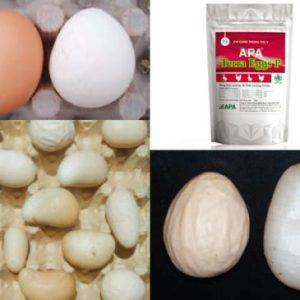 Почему курица несет яйца без скорлупы в пленке: причины и что делать