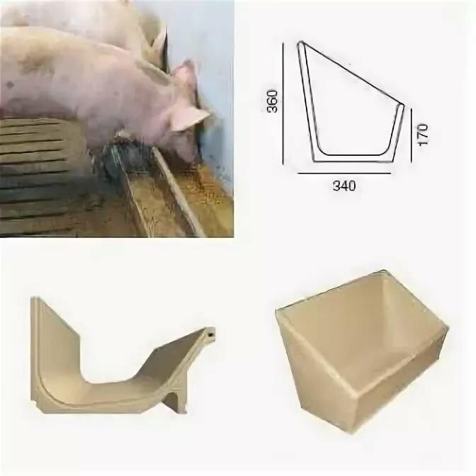 Кормушки для свиней: как сделать своими руками