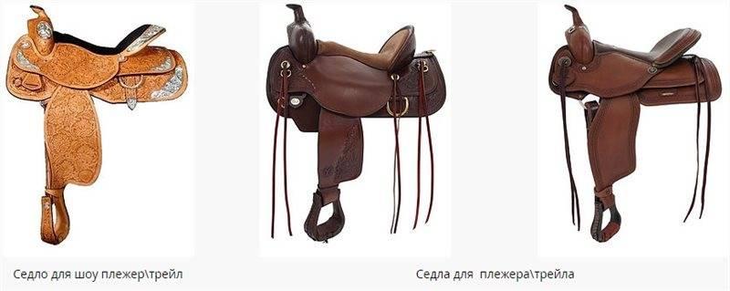 Амуниция для лошади: советы, фото