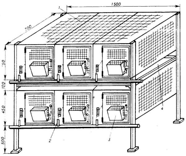 Клетки для декоративных кроликов (34 фото): как сделать своими руками в домашних условиях? размеры клеток для карликовых кроликов