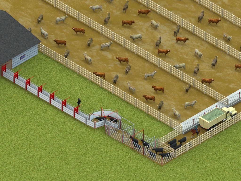 Обоснование планировочных решений молочной фермы на 208 коров