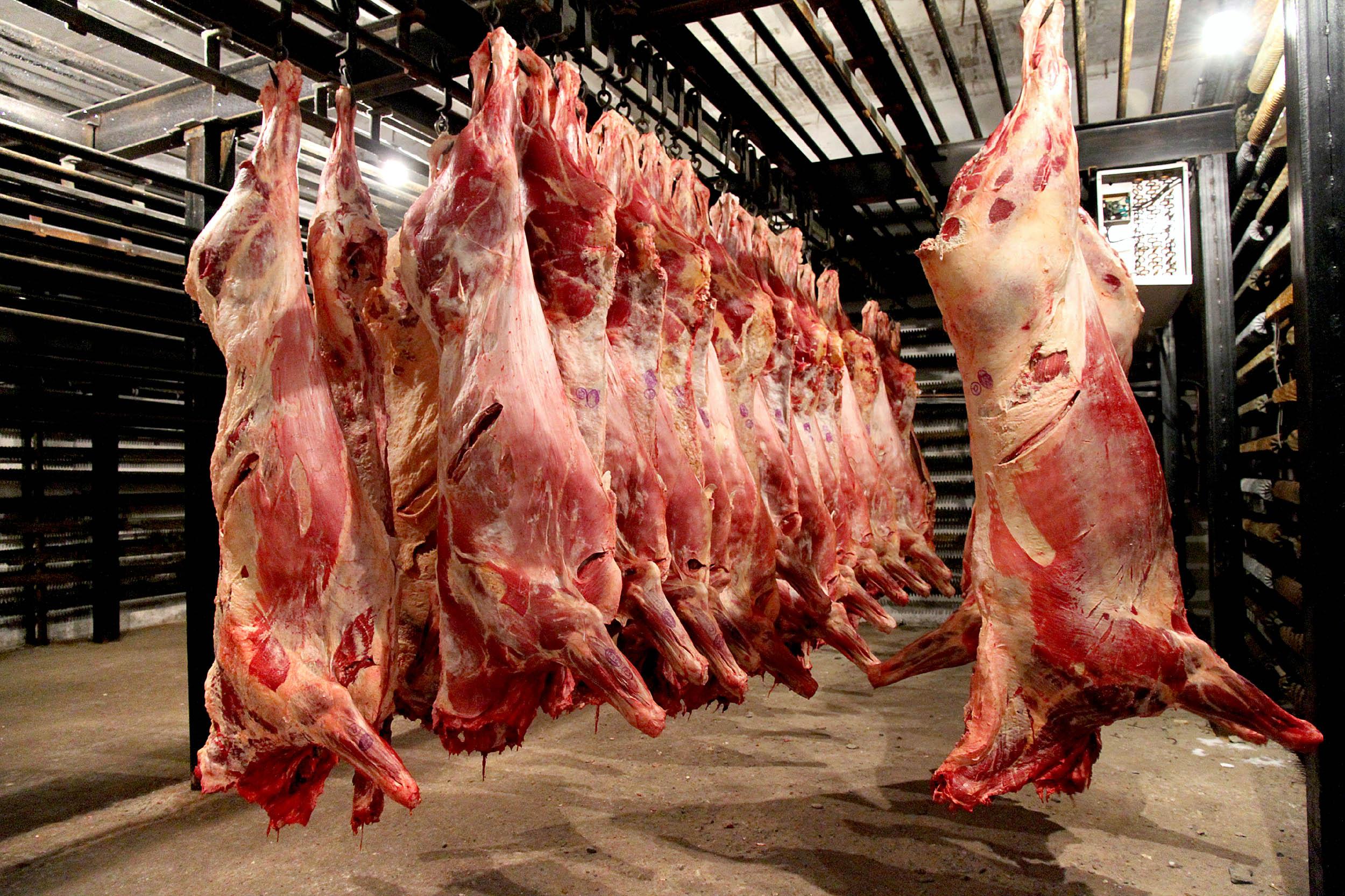 Как режут быков: забой и разделка крс (убойный цех)