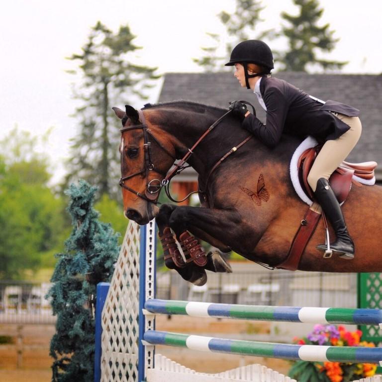 Скаковые породы – лошади для соревнований 2020