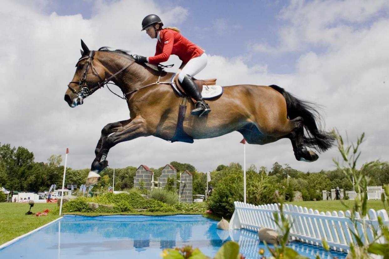 Скачки на лошадях: виды конных соревнований