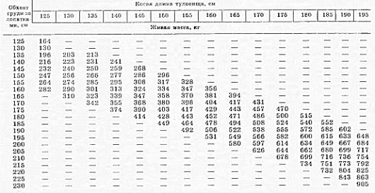 Сколько весит корова – средние показатели, методы определения массы