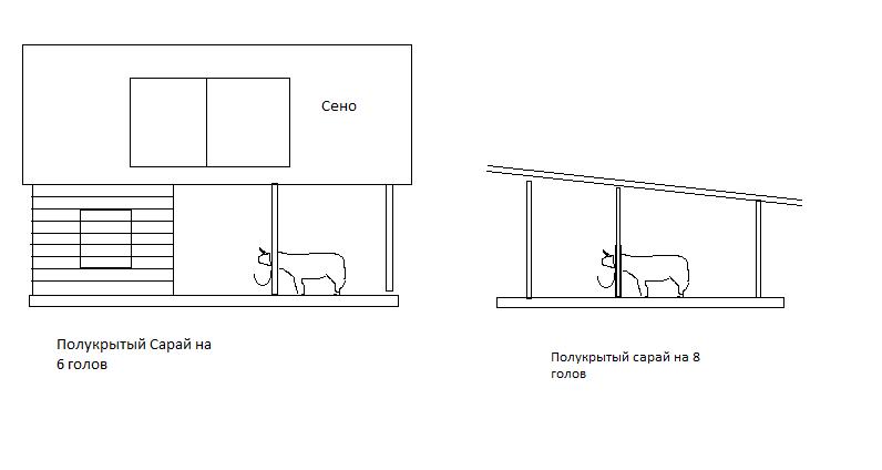 Пошаговый процесс строительства сарая для быков и коров, основные требования к помещению