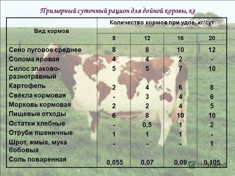 ✅ сколько сена съедает бык за год - питомник46.рф
