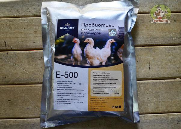 Гамматоник для цыплят и птиц бройлеров: дозировка, инструкция по применению