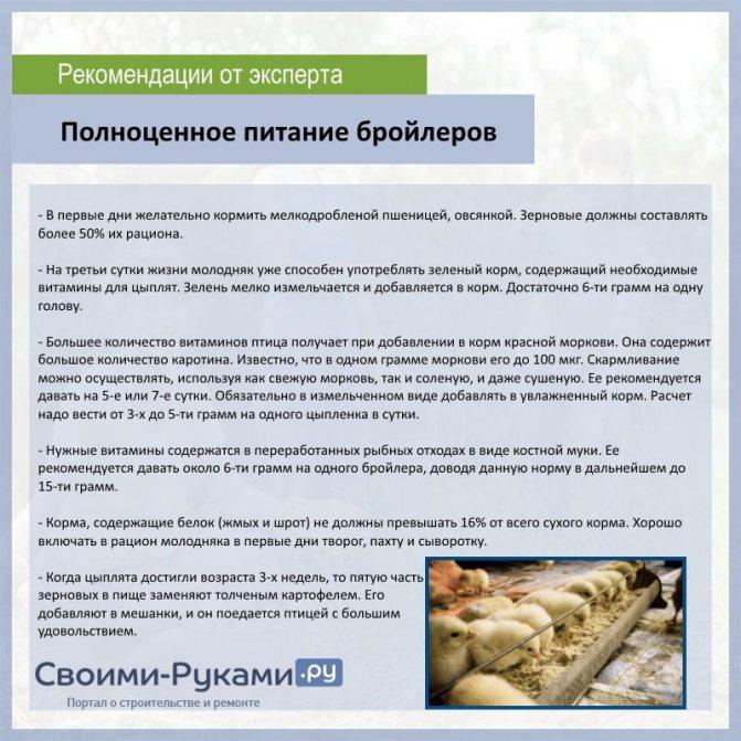 Комбикорм для бройлеров своими руками: рецепт и технология приготовления