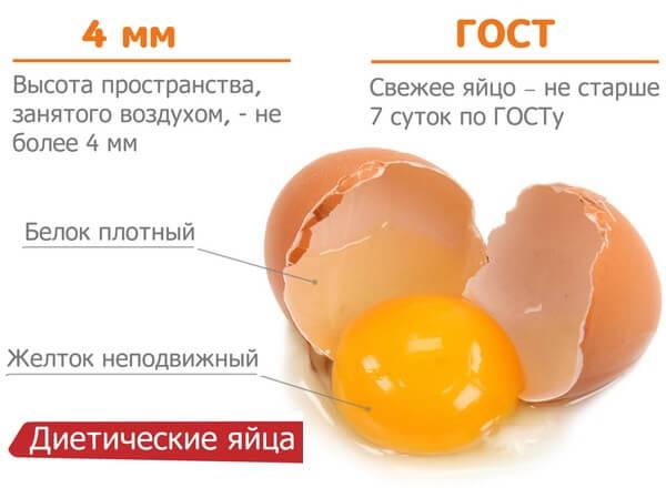 Почему одни куриные яйца коричневые, а другие белые? описание, фото и видео  - «как и почему»