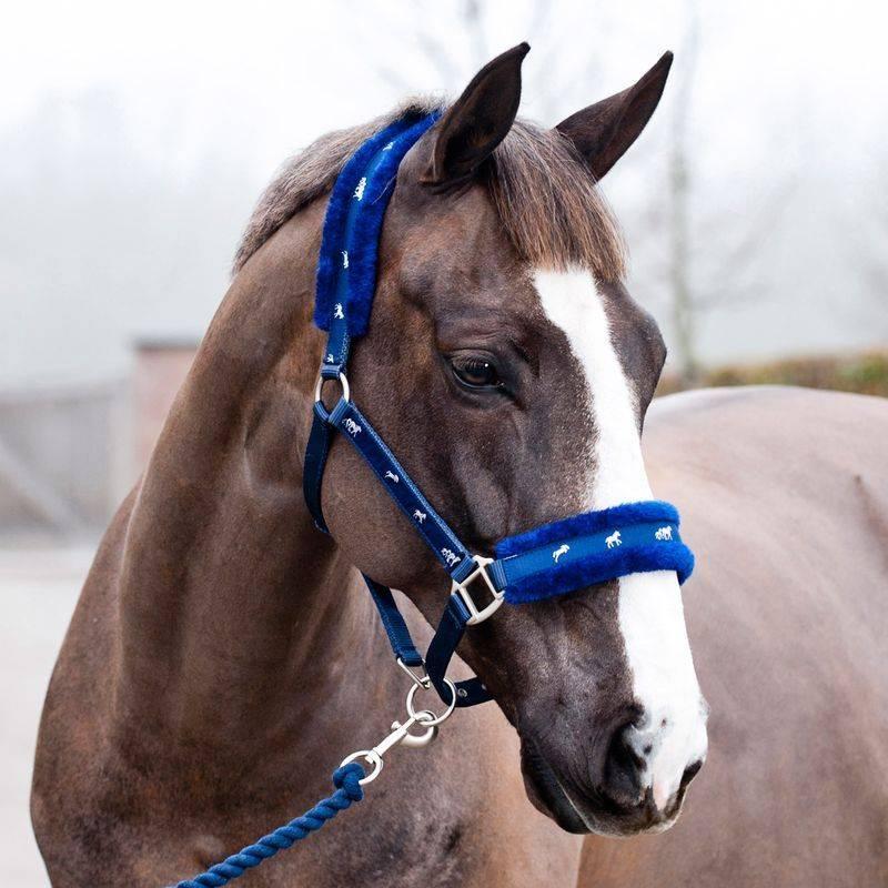 Недоуздок для лошади: инструкция по изготовлению своими руками