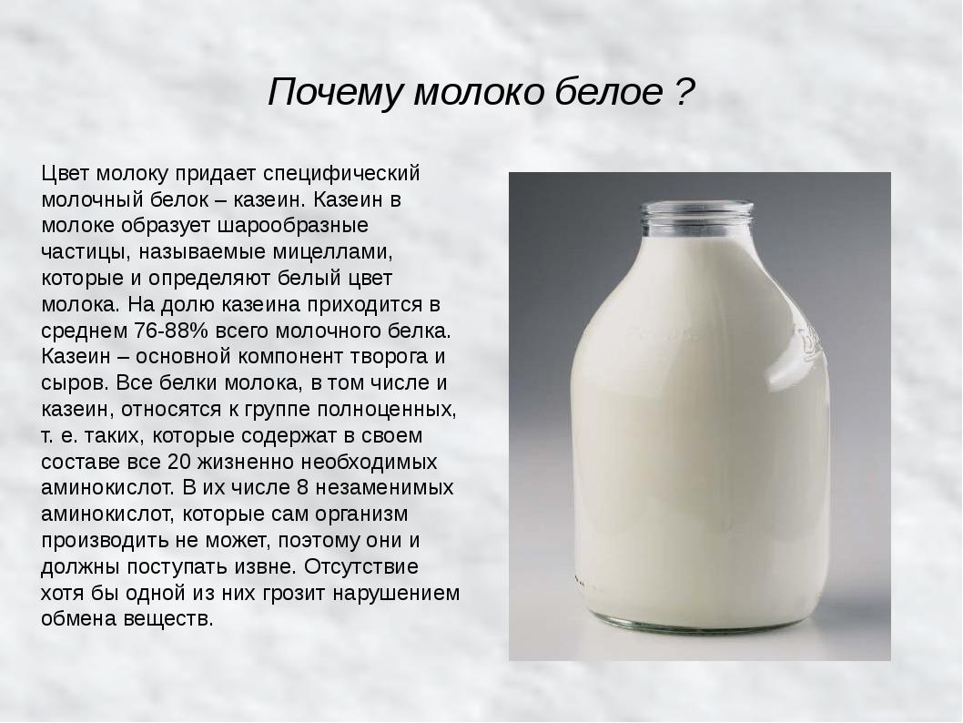 Информация о коровьем молоке: почему молоко пахнет коровой, можно ли пить парное