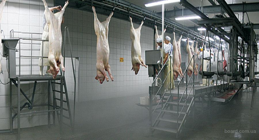 Как правильно разделать корову: части тела животного, польза мяса, особенности его хранения