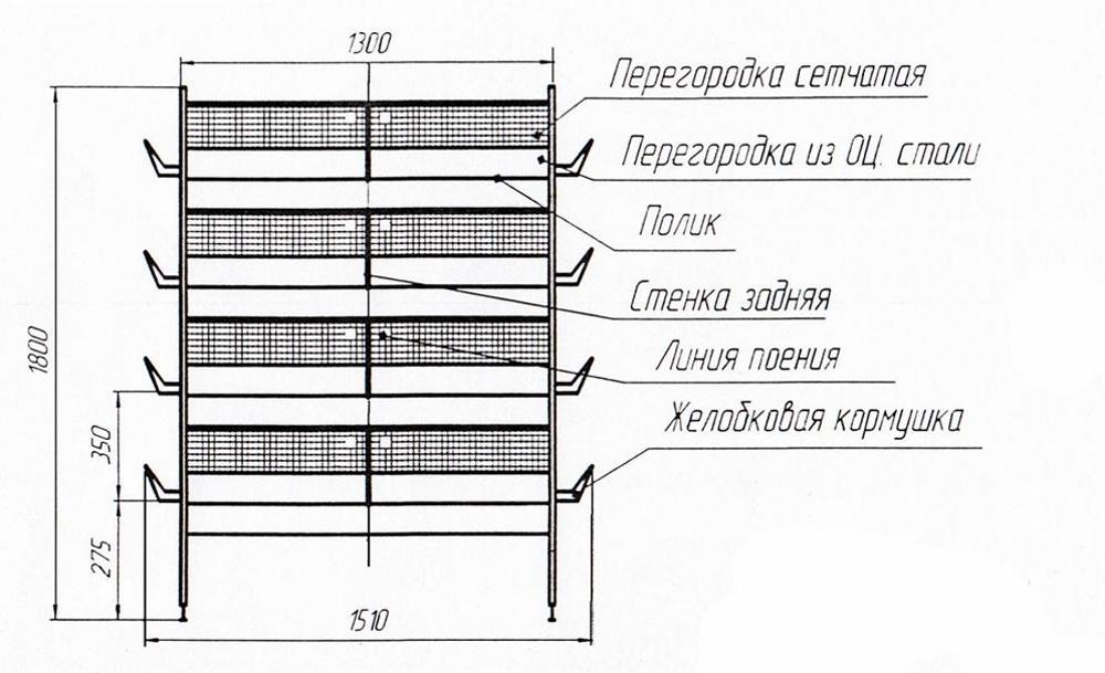 Как сделать клетки для бройлеров своими руками? ⋆ «премьер агро» — агропромышленный журнал