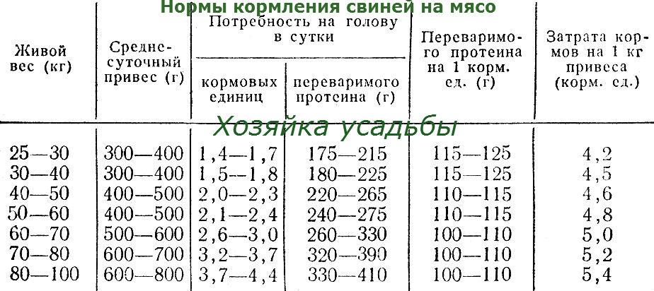 Вес поросят по месяцам: таблица