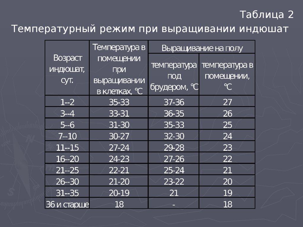 Температура для бройлеров: какой температурный режим нужен для содержания цыплят разного возраста в домашних условиях?