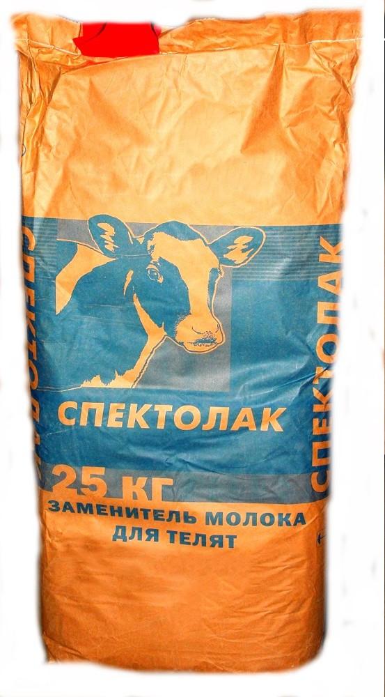 Заменитель цельного молока для телят: пропорции, как разводить и поить