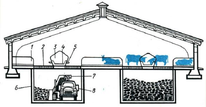 Семейная ферма своими руками: как построить коровник на 20, 50,100 и 200 голов