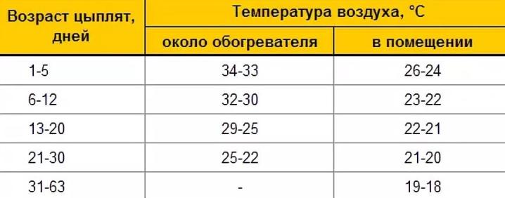 Температура для бройлеров (таблица) - 9ogorod