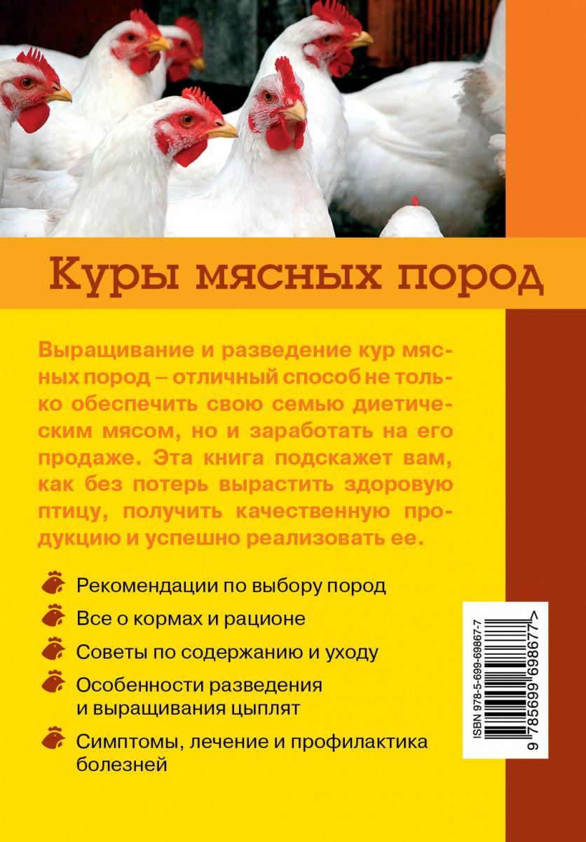 Описание и характеристики лучших мясных породы кур и мини кур