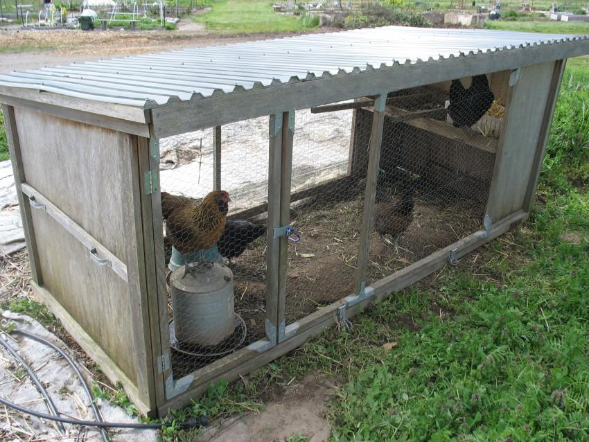 ✅ о загоне для цыплят своими руками: как сделать вольер, курятник, загородку - tehnomir32.ru