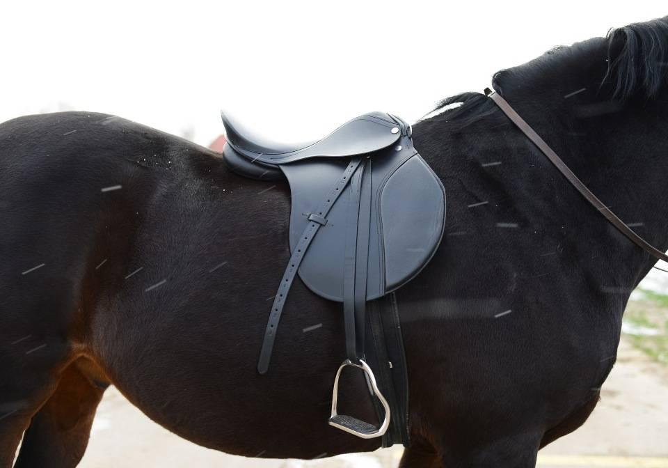 ✅ амуниция для лошадей: в снаряжение для коня входят ошейник, хомут, стремена, ногавки - tehnomir32.ru