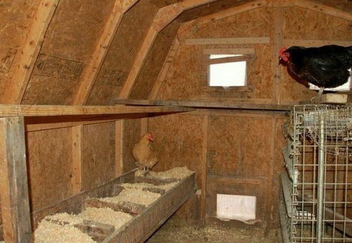 Курятник на 10-20 кур: размеры, чертежи, материалы, утепление, вентиляция, отопление