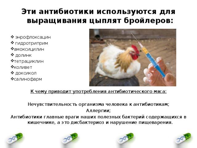 Офлоксацин для кошек, собак, животных