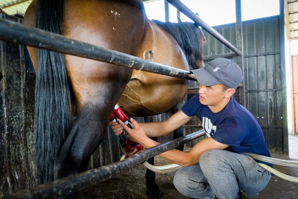 """""""молоко лошади"""" - зеленый огород"""