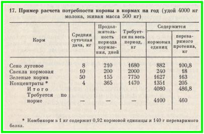 Правила кормления дойных коров: составление рациона, повышение надоев, расчет дневной порции корма