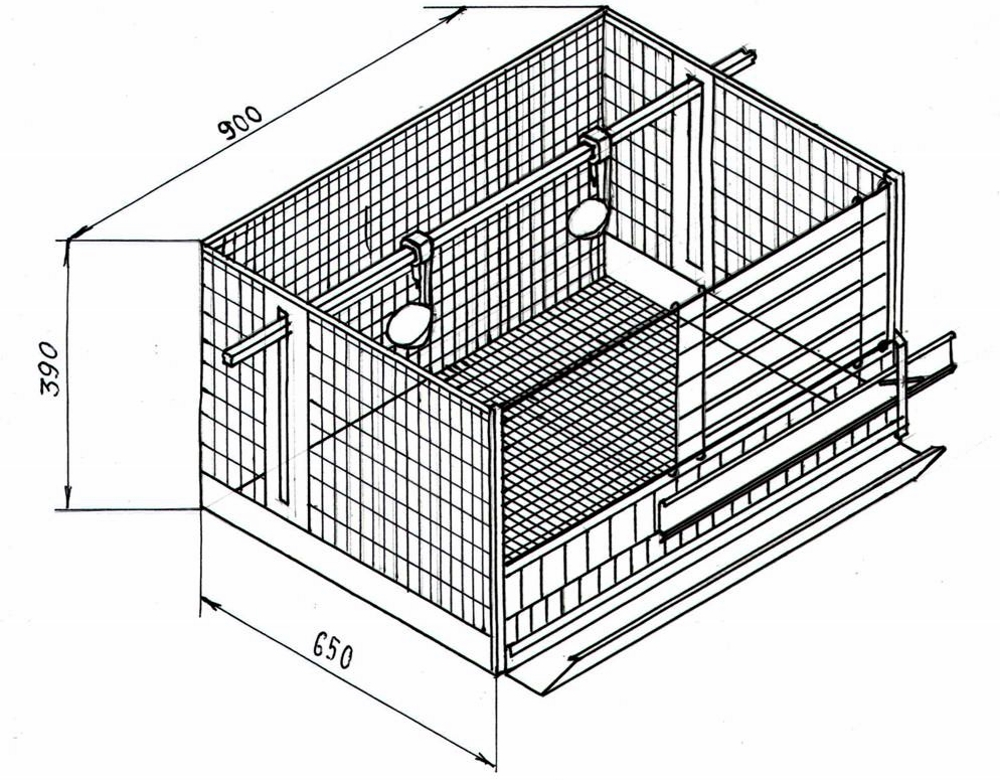 Как сделать клетки для бройлеров своими руками в домашних условиях: инструкция с чертежами и фото