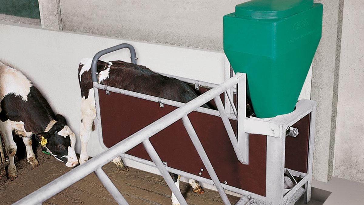 О стойловом оборудовании для крс: кормушка, кормораздатчик, овощерезка, весы
