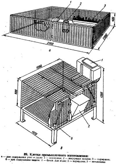Клетки для цыплят своими руками - пошаговые инструкции