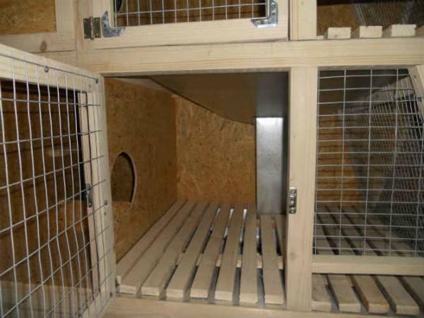 Клетки для кроликов - как сделать клетку своими руками, чертежи и размеры, крольчатник в домашних условиях