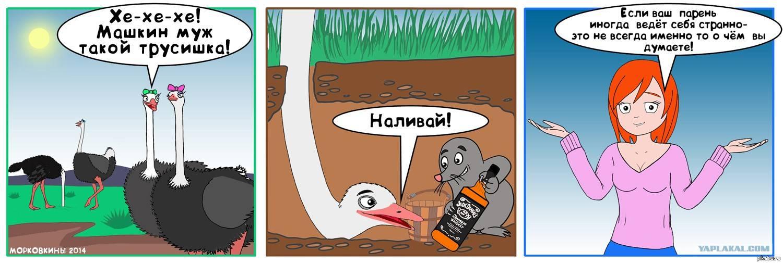 Почему страус прячет голову в песок: мифы и факты