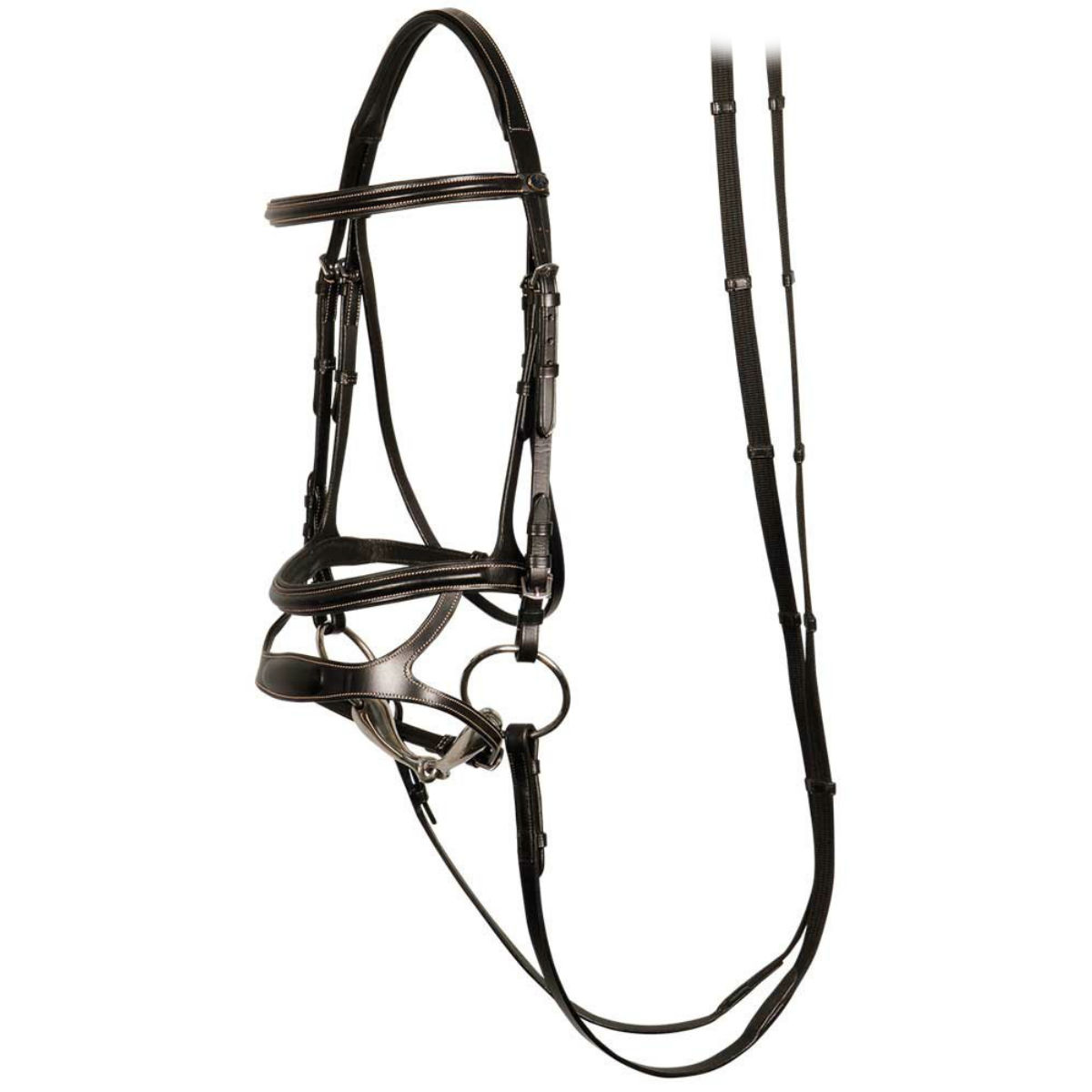Уздечка для лошади: как с ее помощью управлять конем