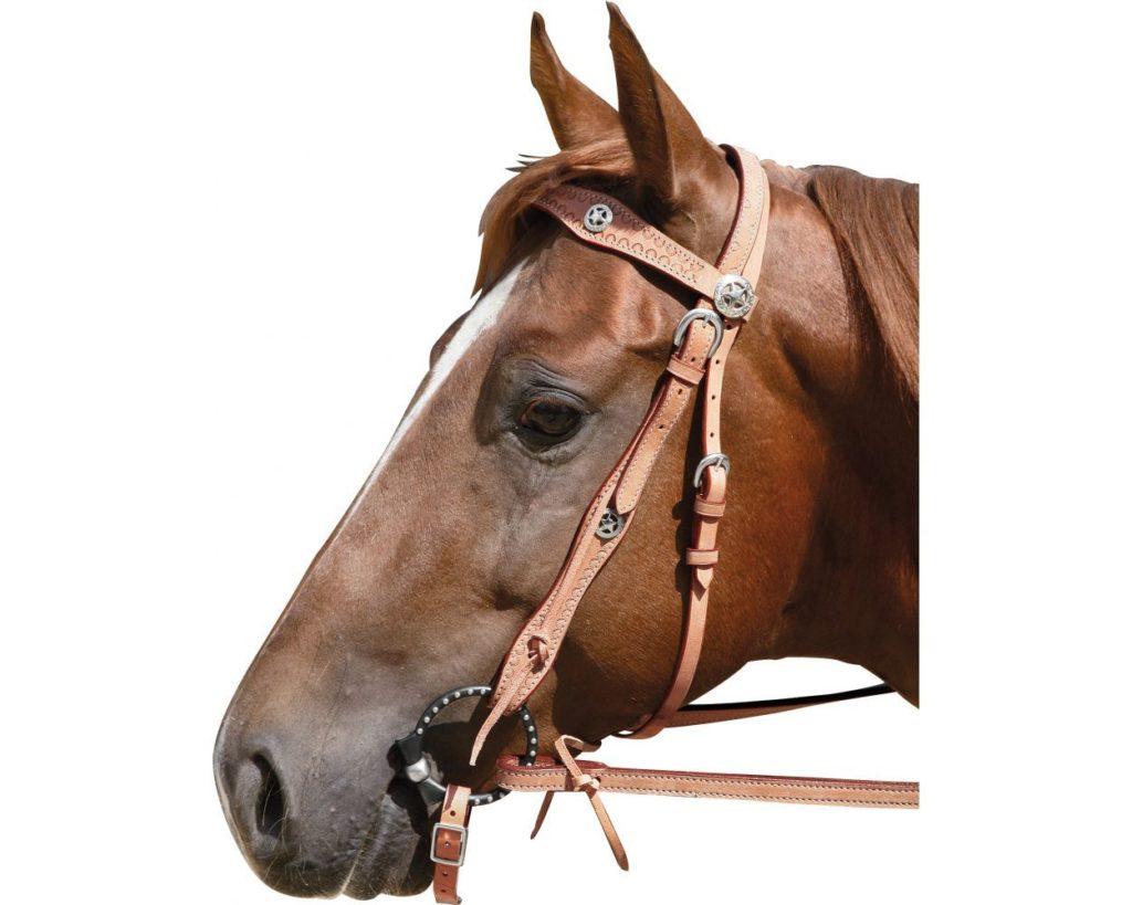Уздечка для лошади — виды, строение, изготовление своими руками
