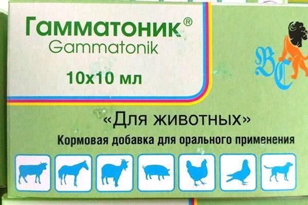 ᐉ гамматоник инструкция по применению в ветеринарии - zoo-mamontenok.ru
