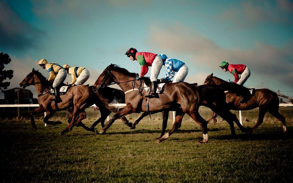Ставки на лошадиные скачки онлайн: правила, стратегии и нюансы
